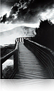 Epson Photo Paper Signature Worthy Premium Traditional 44